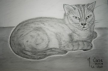 medium_Lechat-dessin.jpg